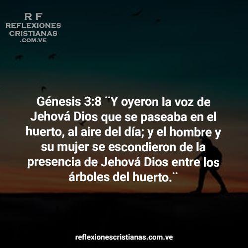 02 de Noviembre: Contacto personal con Dios
